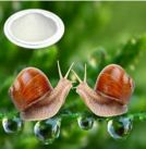 Snail extract powder